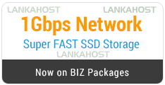 1 Gbps netowork and SSD Powerd Business Hosting Packages